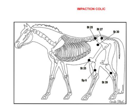 IMPACTION COLIC